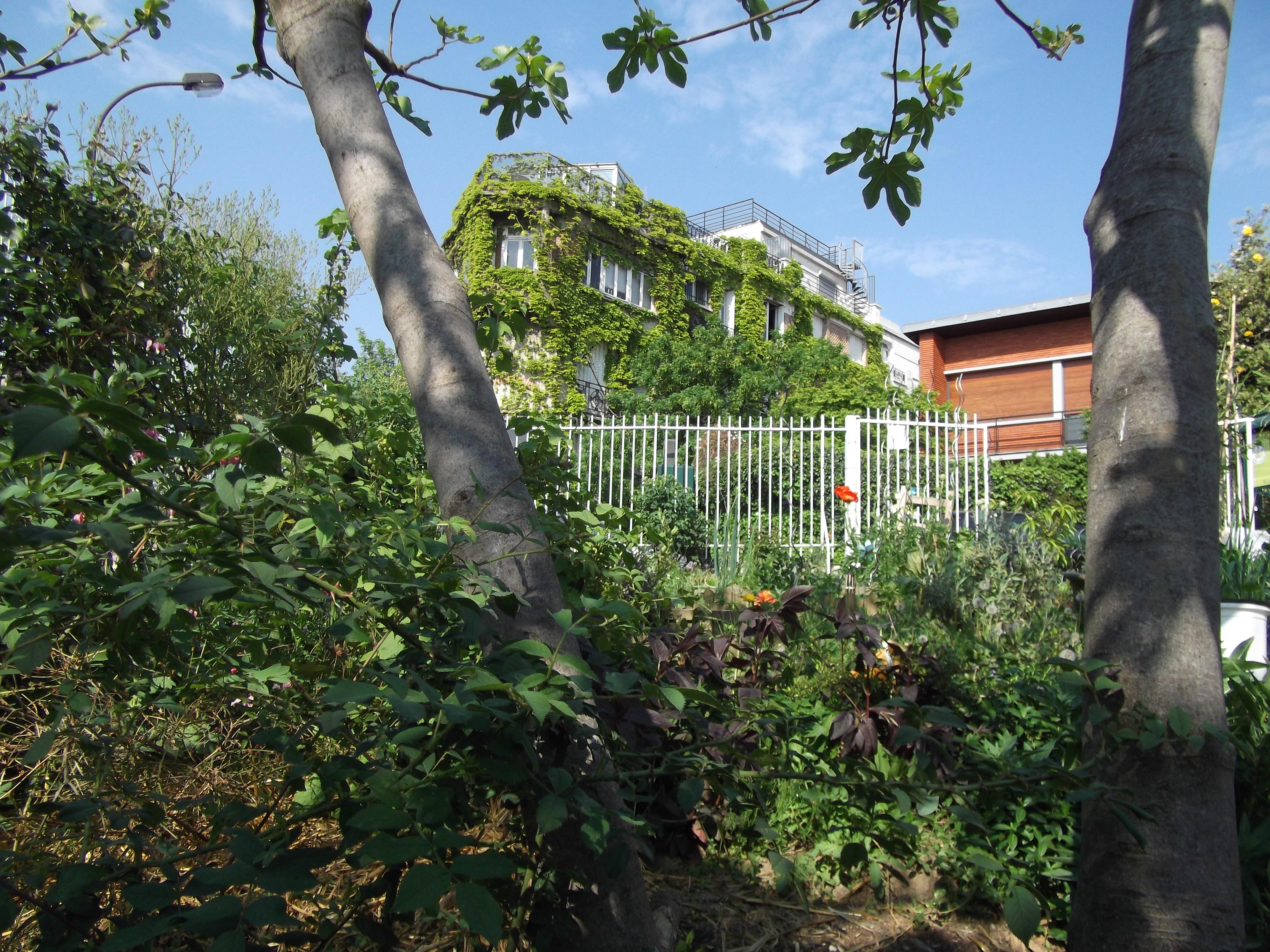 Jardin de la butte bergeyre jardinons ensemble for Jardin de la
