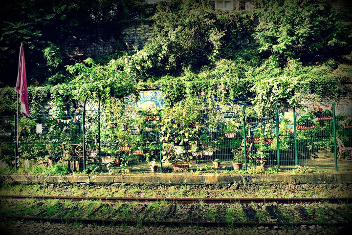 les jardins du ruisseau jardinons ensemble On jardin 75018
